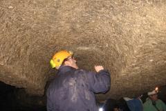 GrottaSp7